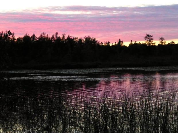Lavendar Sunset_Tom Seliskar