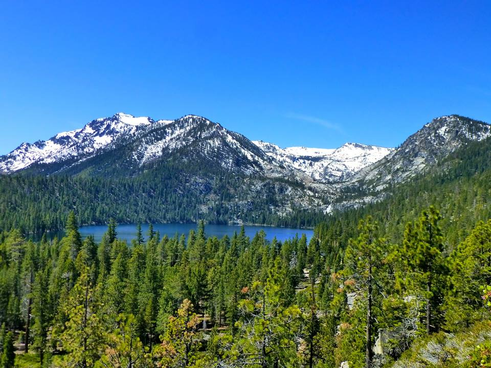 lake tahoe buddhist personals Our center is based on the gelug lineage of tibetan buddhism, the spiritual tradition of his holiness the dalai lama we are part of the foundation for the preservation of the mahayana.