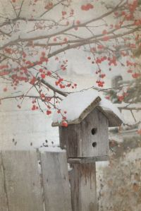 bird house_berries