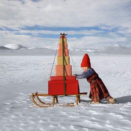 gift sled