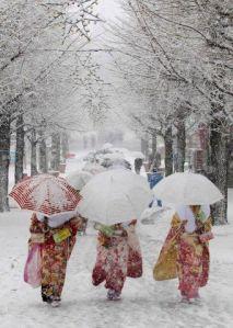 snowy kimono