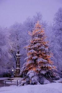 tree_monument