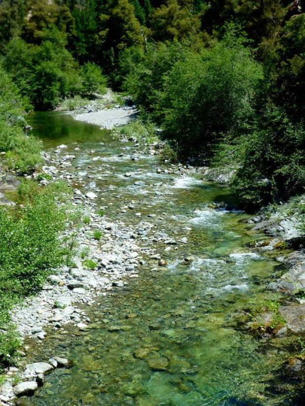 Mtn Stream 2_Tom Seliskar
