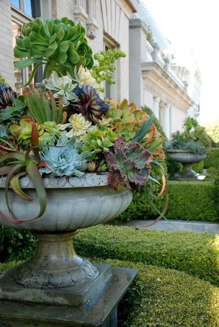 succulents_urn