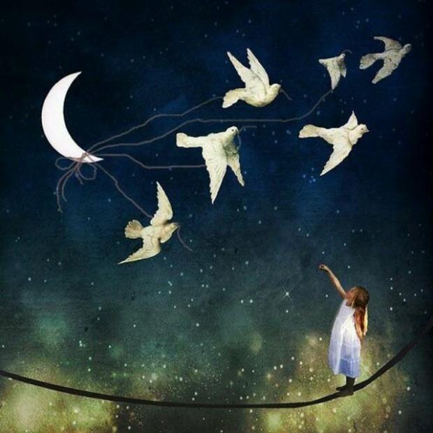bird_moon