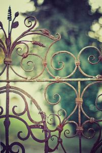 Fence Friday Curly Wurly Edition by Angela on Flickr