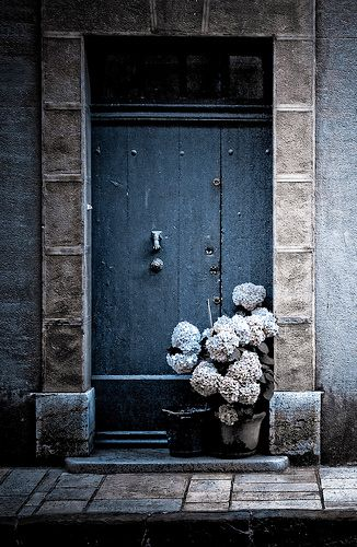 hydrangea at door