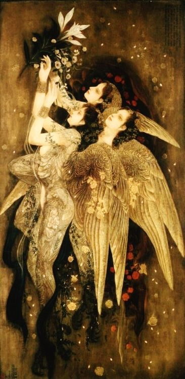 angel wings by Masaaki Sasamoto