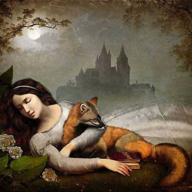 Dreaming in The Woods by Christian Schloe