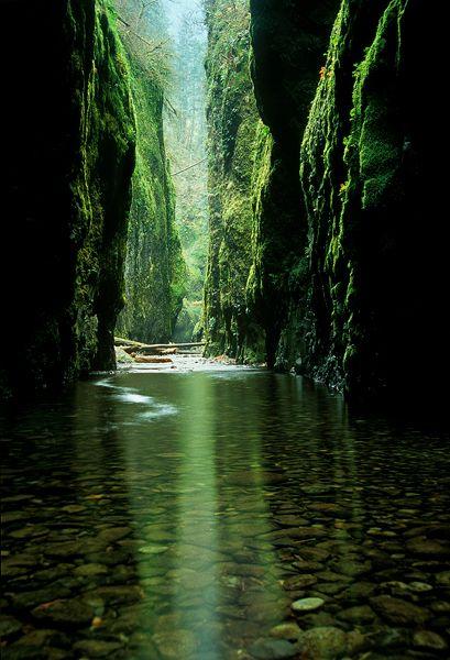 Reflected light inside Oregon's Oneonta Canyon.