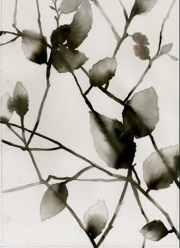 gray foliage_luli sanchez