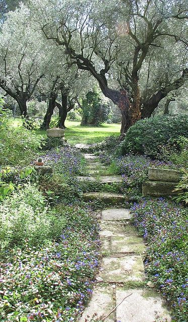 Jardin du Vallon Raget à Saint-Etienne-du-Grès by hortulus