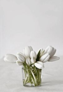 white tulops in simple vase