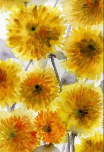 yellow flowers_lulli sanchez