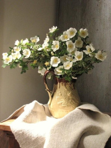 cherokee-roses-and-the-gorgeous-textiles-of-wendy-lewis