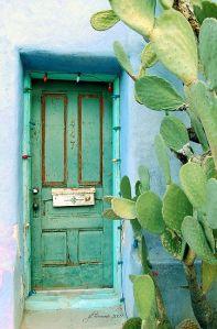 doorway_cactus