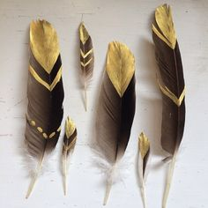 gold tipped feathers