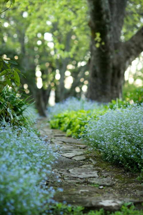 green and blue path