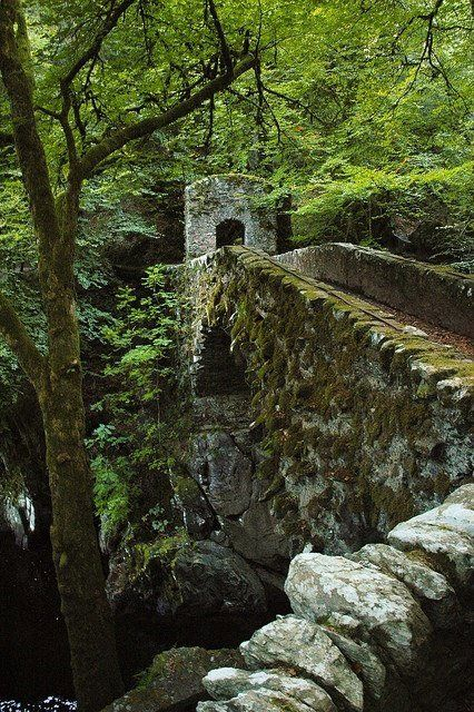 old stone bridge_scotland