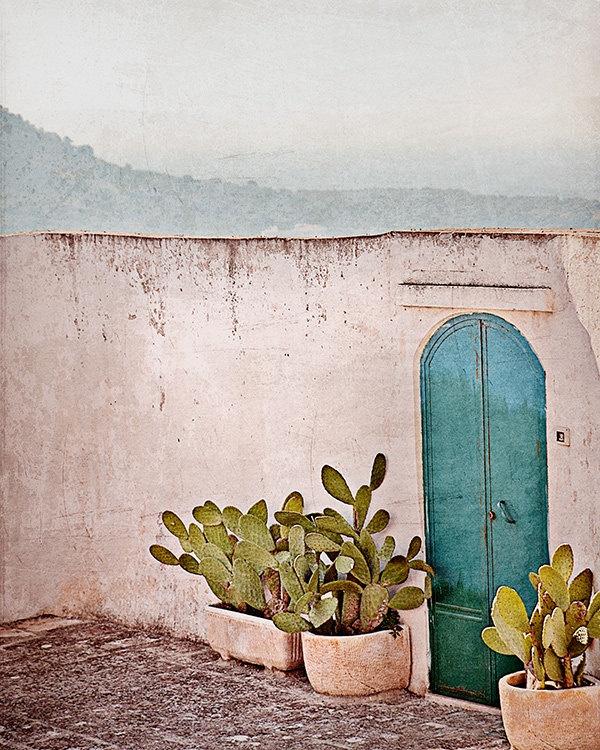 tourquoise-door_cactus-planters