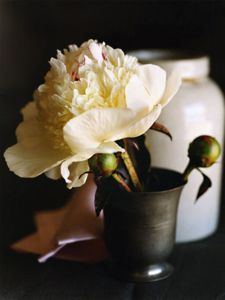white-flower_pewter-vase