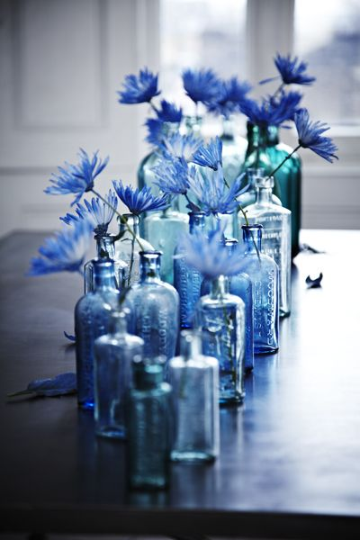 blue flowers in blue bottles