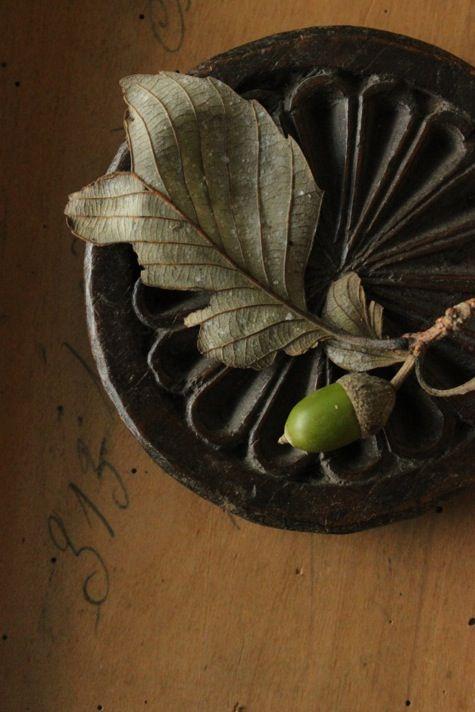 green acorn
