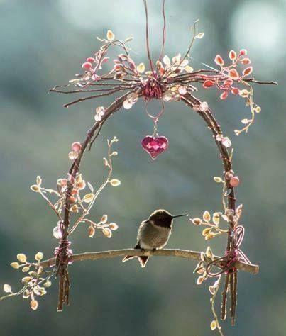 hummingbird_arch