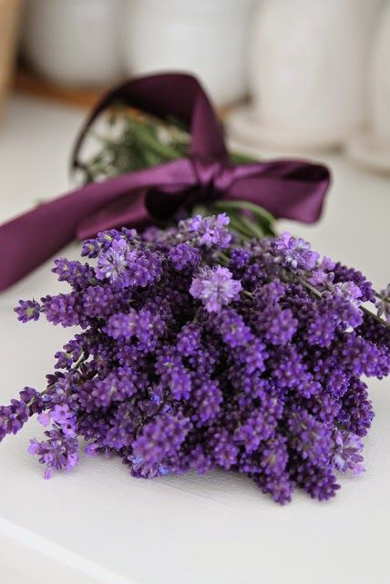 lavender bundle with bow