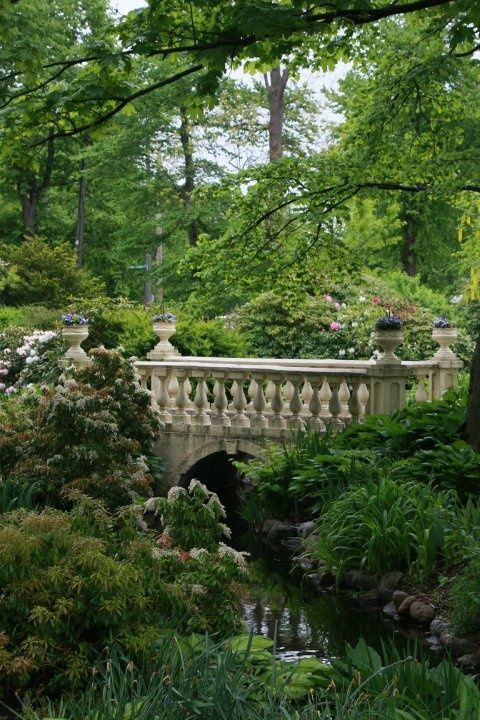 bridge over garden stream