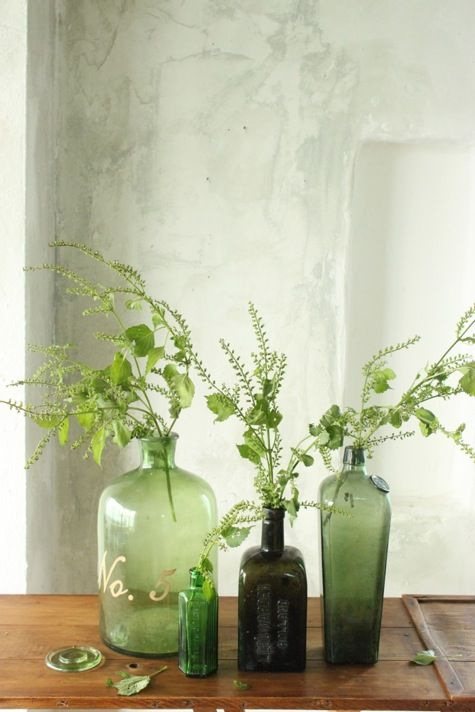 green bottles and ivy