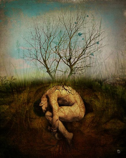 The dreaming tree by Christian Schloe