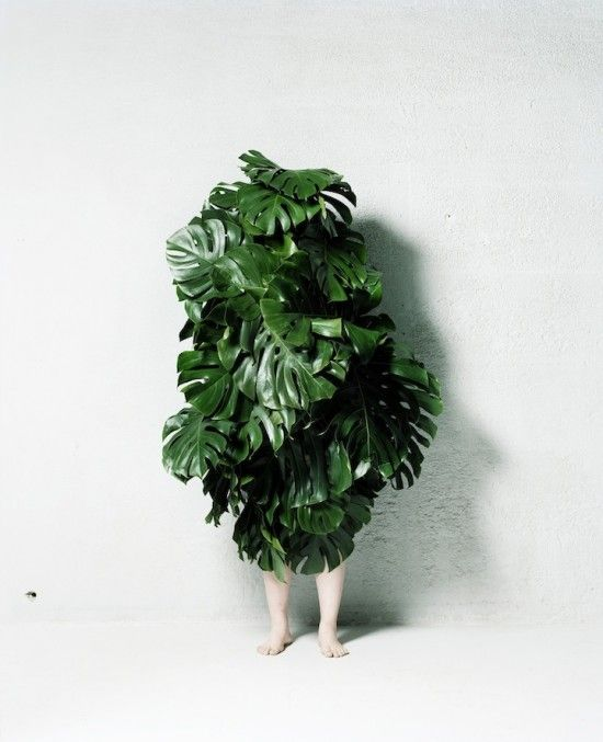 leaf people project