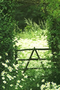 rustic gate and meadow