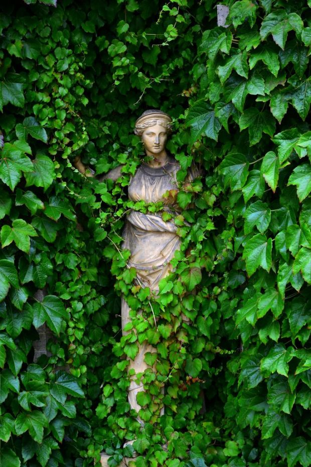 The Lady in the Ivy, Statue at Belton House, Lincolnshire, England by matt.deamer