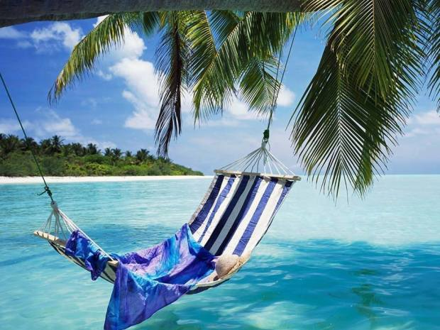 ocean hammock