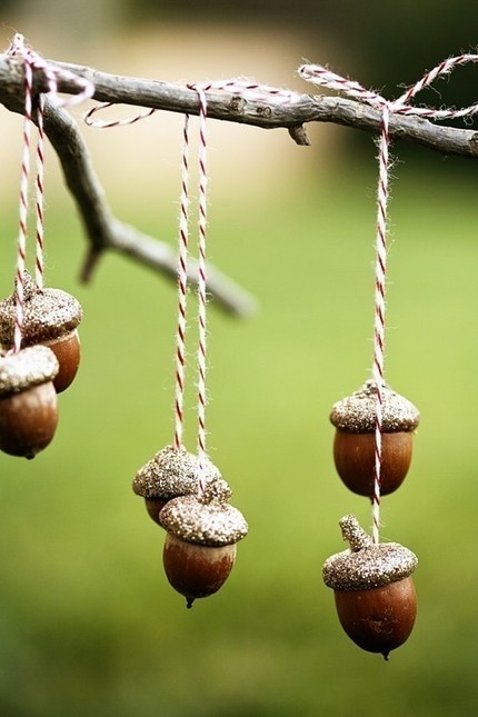 acorns via etsy