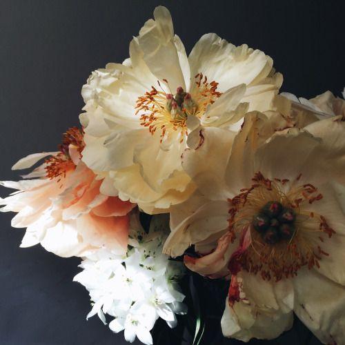 flowers via thefullerview