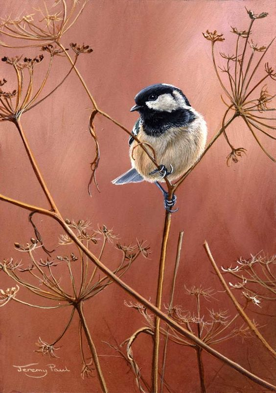 jeremy-paul-wildlife-artist